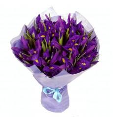 Букет из 29 ирисов «Фиолетовый рассвет»