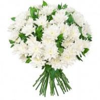 Букет из 9 белых хризантем  «Сахарная пудра»