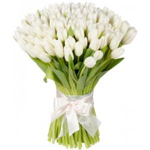 Букет из 25 белых тюльпанов «Белый шоколад»