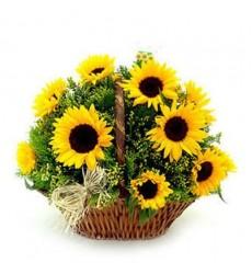 Корзина цветов с 9 подсолнухами и зеленью «Жаркое лето»