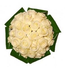 Букет из 33 белых роз и зелени «Сливочный крем»