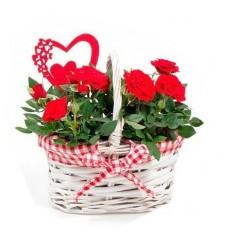 Корзина цветов с 5 красными розами Гран При и 4 кустовыми розами «Романтичное послание»