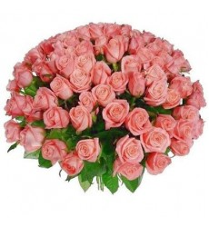Букет из 101 розовой розы «Комета любви»