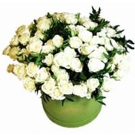 Цветы в коробке  с 25 кустовыми розами «Улыбка Луизы»