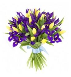 Букет из 25 ирисов и 26 тюльпанов «Отблески рассвета»