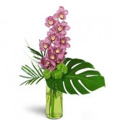 Букет из ветки розовой орхидеи с зеленью «Розовый восход»