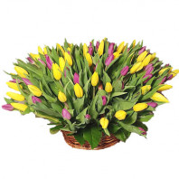Корзина цветов со 101 розовым и жёлтым тюльпанами «Детская мечта»