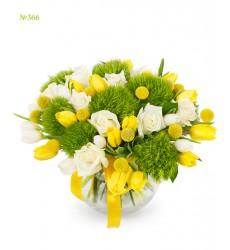 Букет из 9 гвоздик, 11 краспедий и 23 тюльпанов «Весенний колокольчик»
