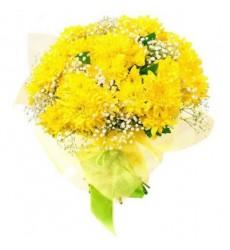 Букет из 7 кустовых хризантем «Весеннее золото»