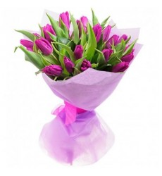 Букет из 21 тюльпана «Малиновый закат»