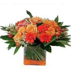 Букет из 5 роз Мисс Пигги «Янтарный прибой»