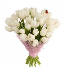 Букет из 31 белого тюльпана «Цветочный ноктюрн»