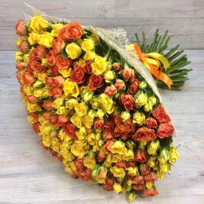 Букет из 101 жёлтой и оранжевой кустовой розы «Луч солнца»