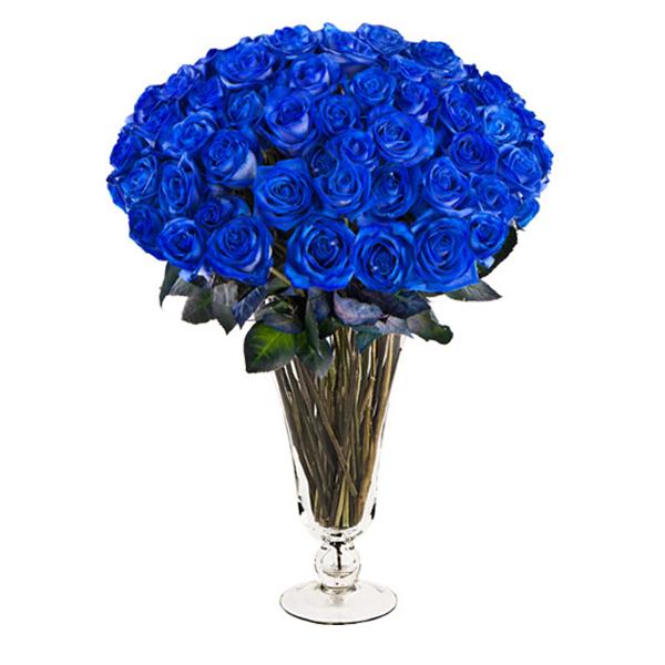 Букет из 59 синих роз Венделла блю «Благородный синий»