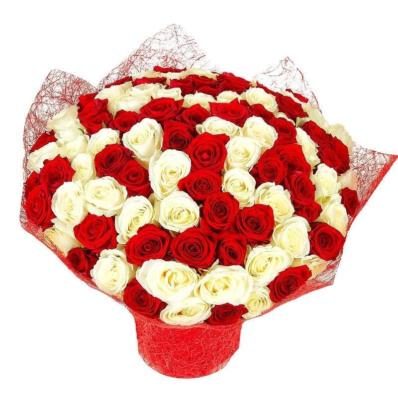 Букет из 101 красной и белой роз Гран При и Аваланж «Цветочный круговорот»