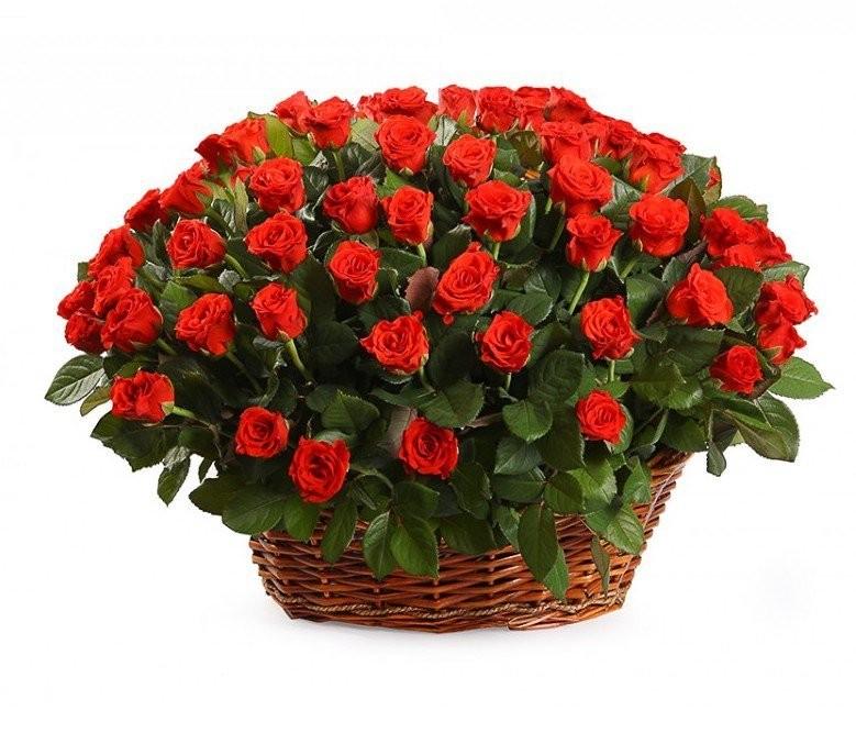 Корзина цветов со 101 розой Эль Торо «Сердце тореадора»