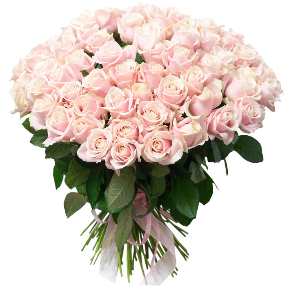 Букет из 101 розы розового цвета  «Селеста »