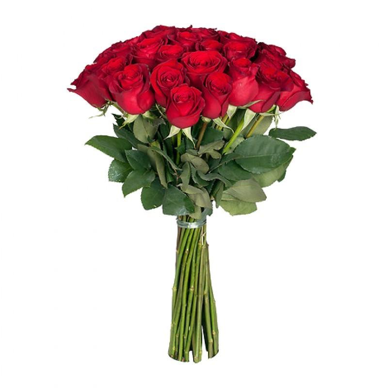 Букет из 25 красных роз «Французская страсть»