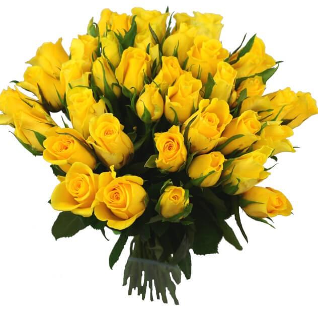 Букет из 25 желтых роз «Солнечные лучи»