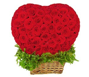 Букет из 201 красной розы Гран При «Мечта Афродиты»
