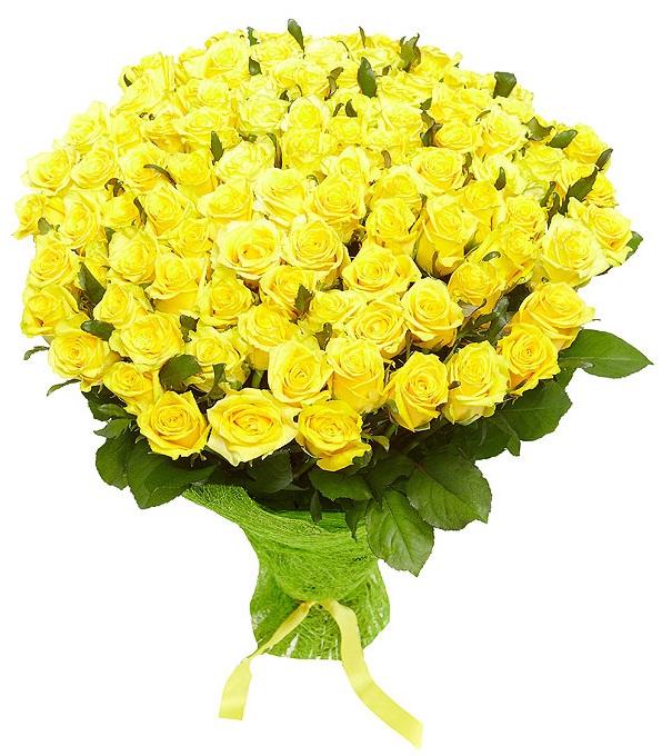 Букет из 43 роз желтого цвета  «Сияние»
