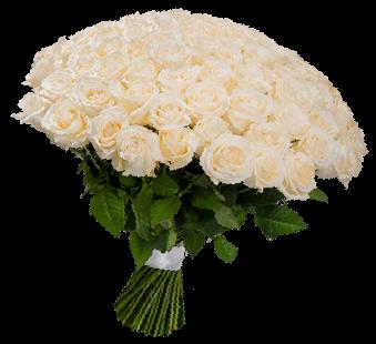 Букет из 49 белых роз «Порыв нежности»