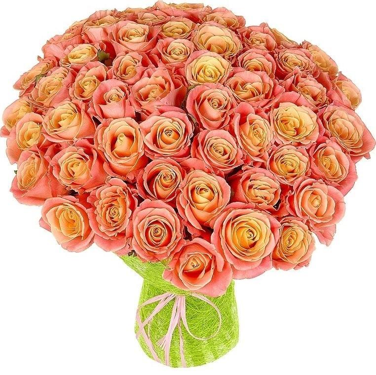 Букет из 50 роз Мисс Пигги «Флейта любви»