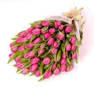 Букет из 51 розового тюльпана «Мартовский кот»