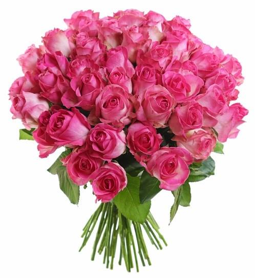 Букет из 51 розовой розы  «Ванесса»