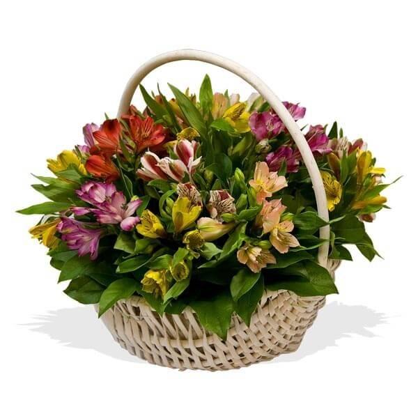 Корзина цветов с 15 альстромериями «Любовная мистерия»