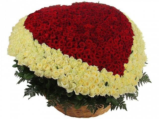 Цветочная композиция из 1001 розы «Вечная страсть»