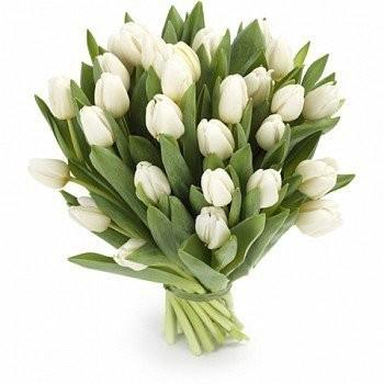 Букет из 31 белого тюльпана «Горный хрусталь»