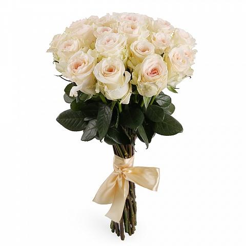 Букет из 21 бело-розовой кенийской розы «Жемчужина красоты »