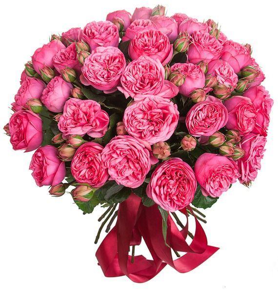 Букет из 15 роз Pink Piano «Клубничная романтика»