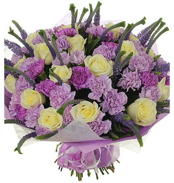Букет из 40 лиловых гвоздик, 19 роз  Alabaster и 35 вероник «Поцелуй в сумерках»