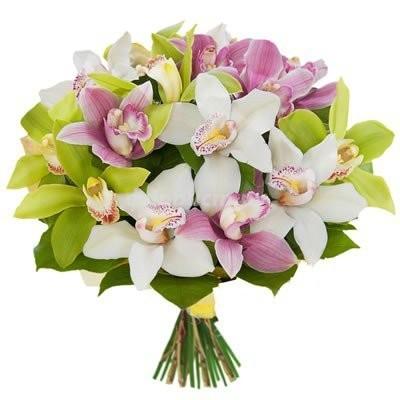 Букет из 15 разноцветных орхидей «Неземная красота»