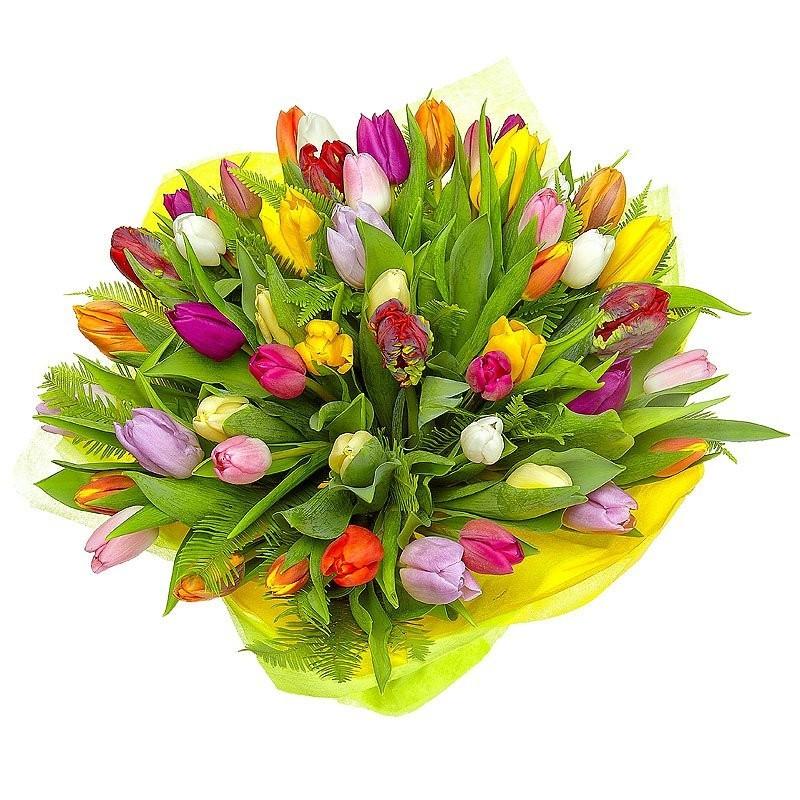 Букет из 51 тюльпана «Весенняя Прага»