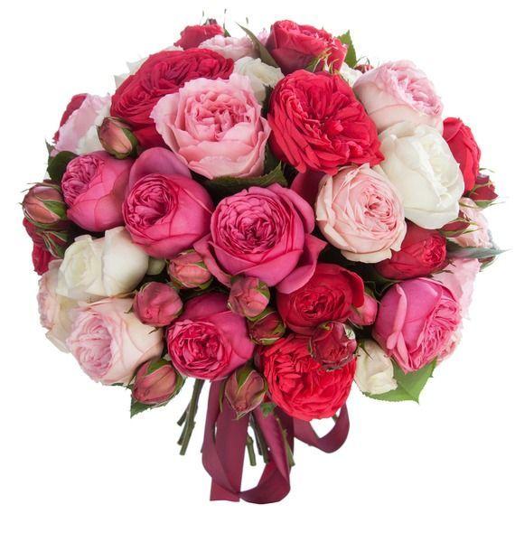Букет невесты из  35 хризантем Сантини  «Девичьи губки»