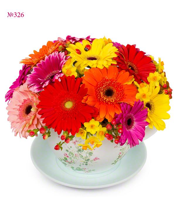 Цветы в чаше с 15 герберами и 7 нарциссами «Волшебное лето»