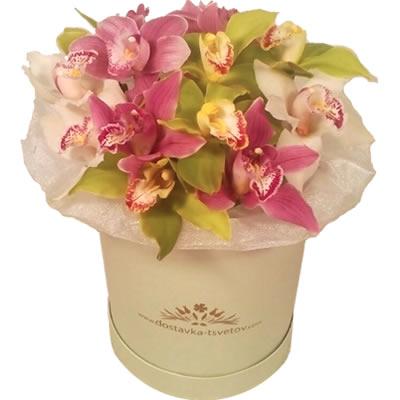 Цветы в коробке с 15 орхидеями «Изнеженная принцесса»