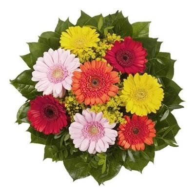 Букет из 9 разноцветных гербер «Красочная пора»