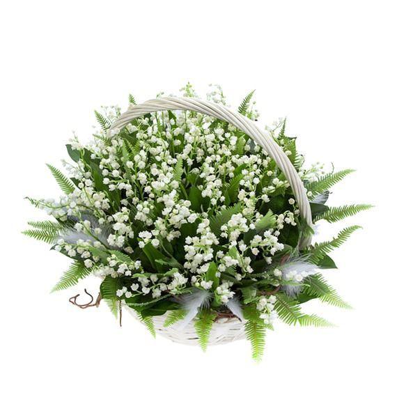 Корзина цветов с 75 ландышами и зеленью «Луговой мотылёк»