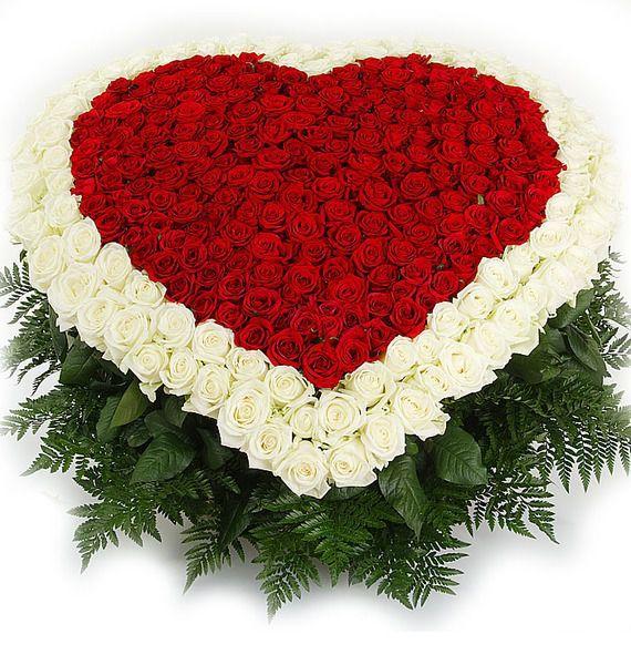 Корзина цветов с 70 розами Гран При и 31 белой розой «Сердце романтика»