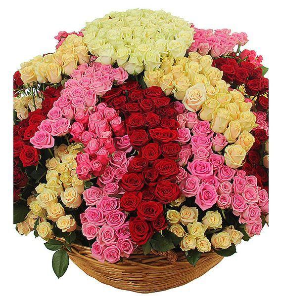 Корзина цветов с 801 розой и папоротником «Озеро роз»