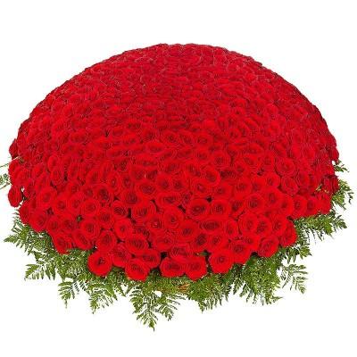 Корзина цветов с 501 красной розой «Путь к любви»