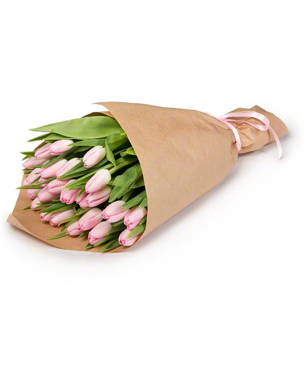 Букет из 25 тюльпанов «Нежно-розовый сон»