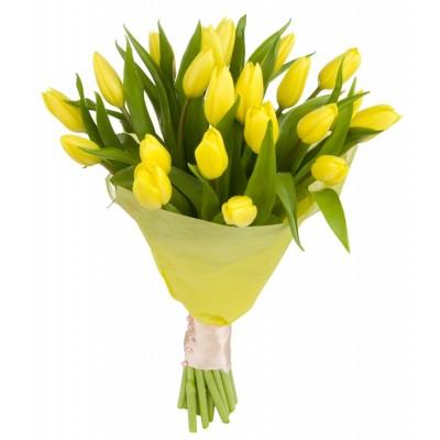 Букет из 21 жёлтого тюльпана «Золотой этюд»