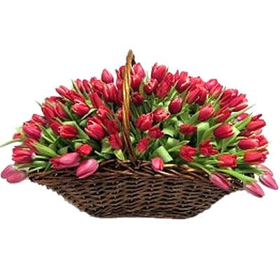 Корзина цветов с 75 розовыми тюльпанами «Рубиновая россыпь»