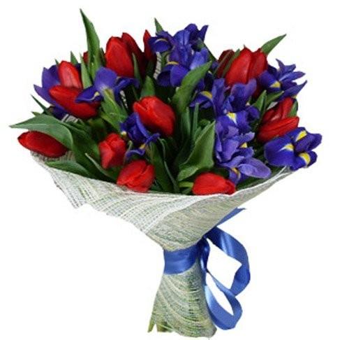 Букет из 15 красных тюльпанов и 14 ирисов «Изысканные контрасты»