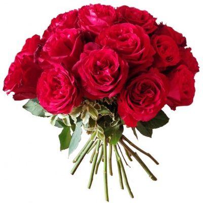 Букет из 21 пионовидной розы «Изящные слова»